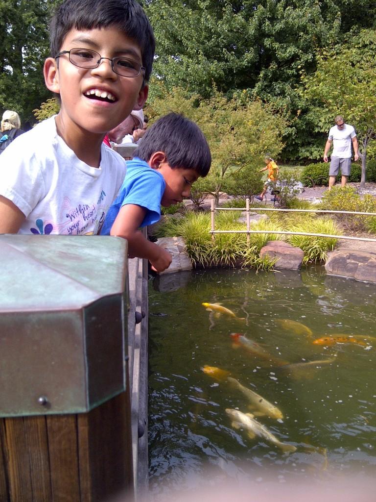 Orahood boys - fish pond
