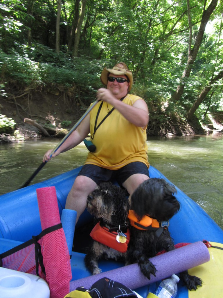 Dogs in rafts on Meramec River