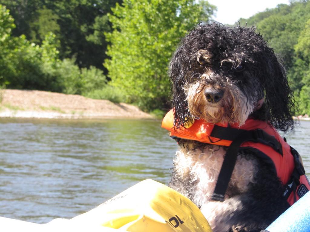 Toby enjoying the raft ride