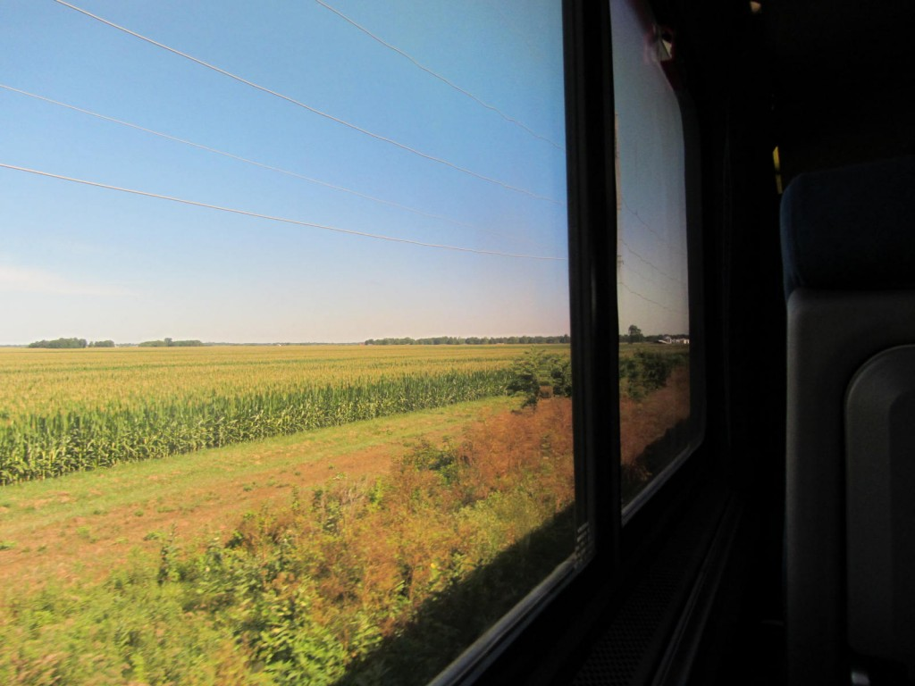 Amtrak - view from window of corn fields
