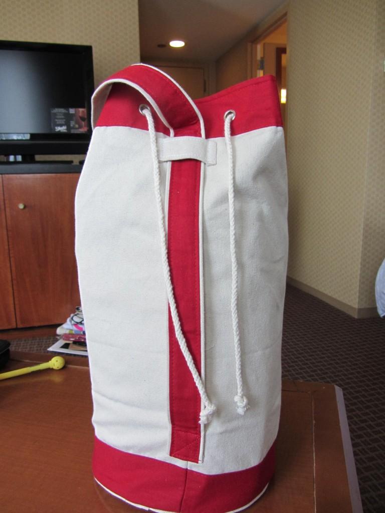 Swag bag back