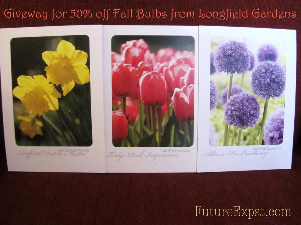 Fall bulb giveaway prize