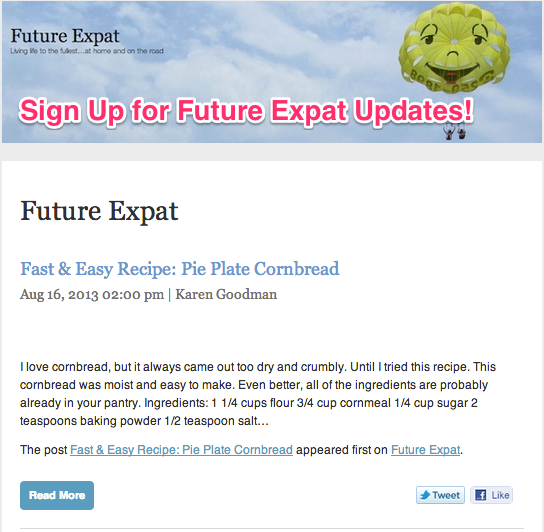 Sign up for email updates to Future Expat