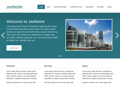 Wordpress Responsive Theme review - ZeeNoble