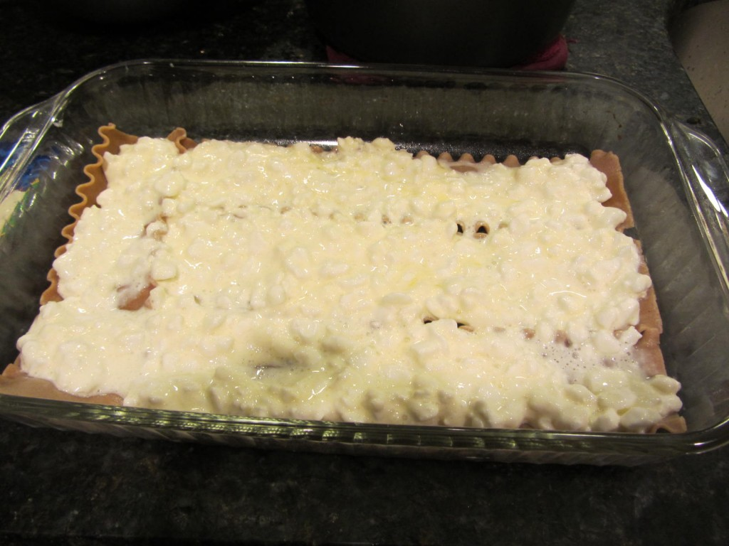 Lasagna assembly - cottage cheese