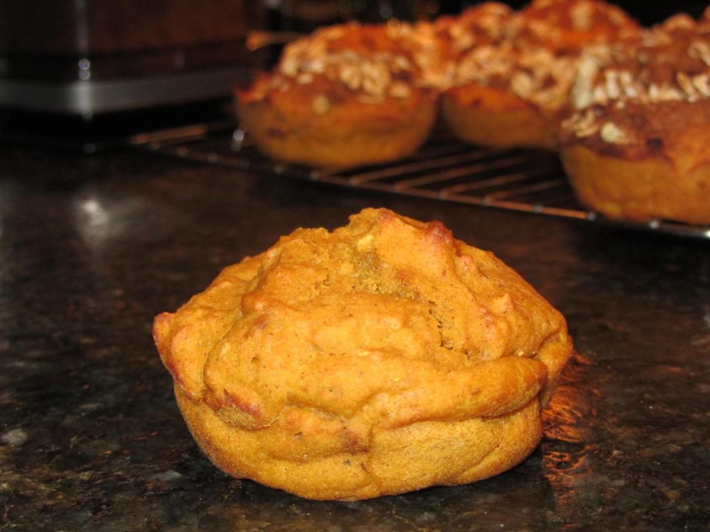Oatmeal Pumpkin Muffins 9