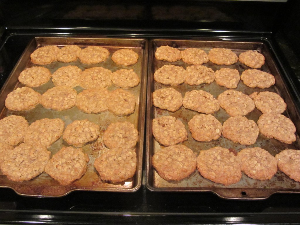 Oatmeal cookies on cookie sheets