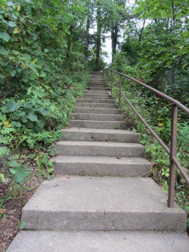 Sherwood Forest Camp steps