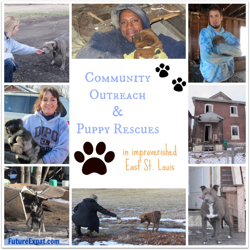 Puppy Rescue in East St. Louis and Community Outreach