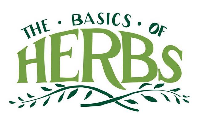 Planning Your Herb Garden {INFOGRAPHICS}