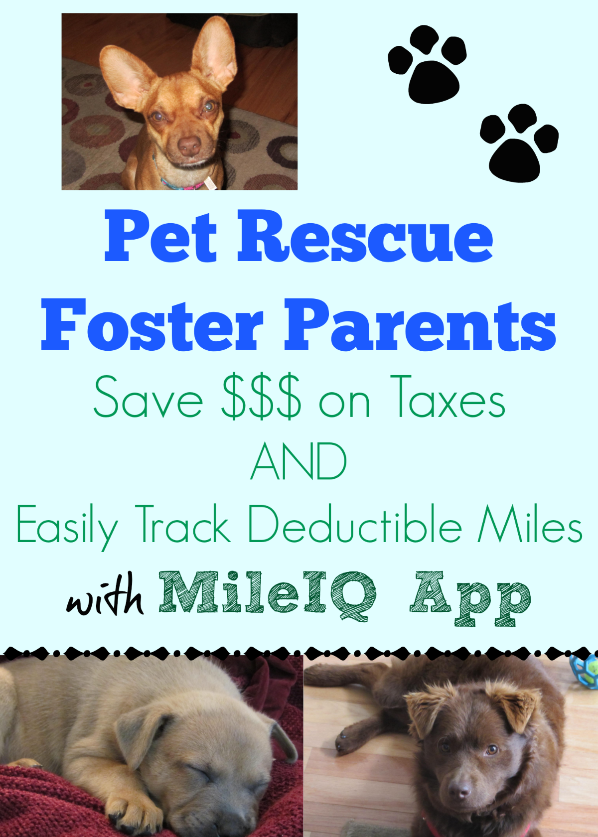 Pet Rescue Foster Parents ~ Save $$$ on Taxes & Track Deductible Miles with MileIQ App