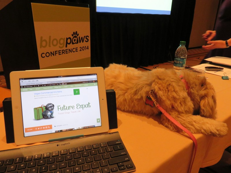 Blog Paws Conference - tablet for notes