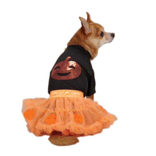 10 Adorable Dog Halloween Costumes