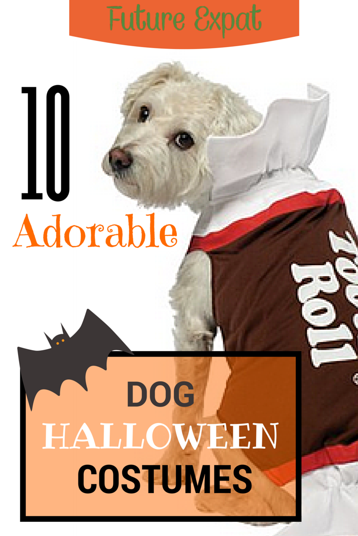 Pets future expat 10 adorable dog halloween costumes solutioingenieria Choice Image