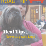 Lessons from My 4000 Mile Road Trip: Meal Tips for Traveling with Dogs | Future Expat