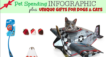 Pet Gift Spending INFOGRAPHIC plus Unique Gifts for Dogs and Cats