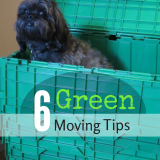 6 Green Moving Tips | Future Expat