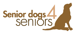 Senior Dogs for Seniors - Dog Rescue in St. Louis | Future Expat